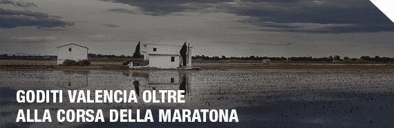 MVTA_DISFRUTA_DE_VALENCIA_ITA