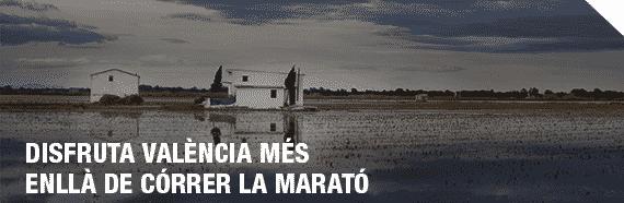 MVTA_DISFRUTA_DE_VALENCIA_VAL
