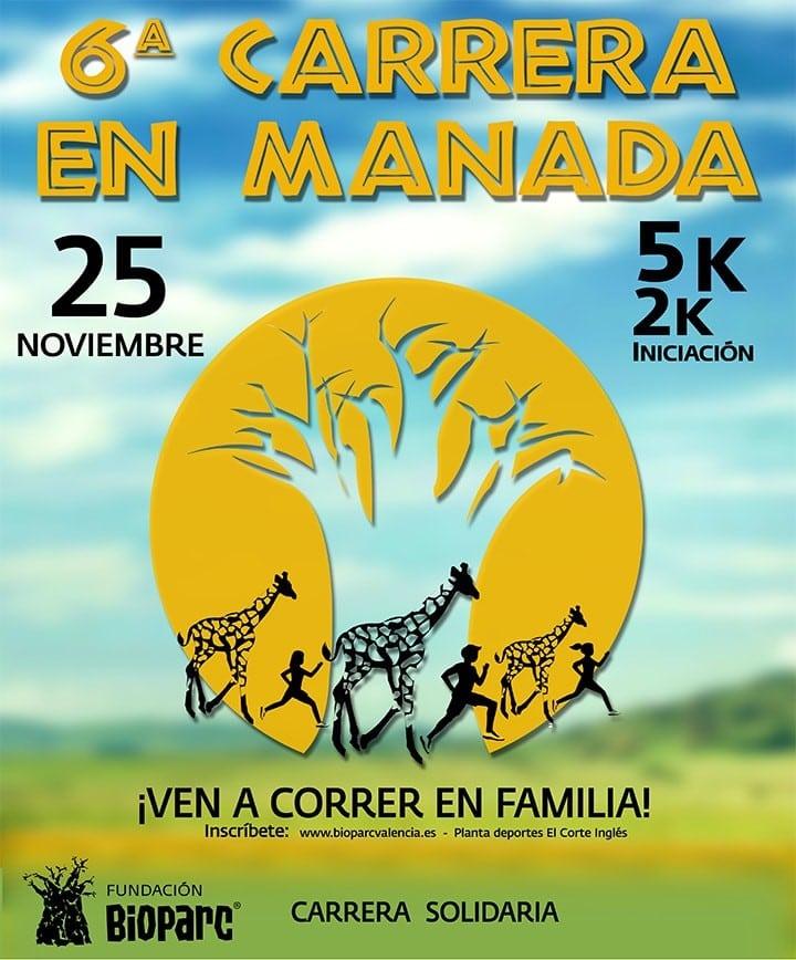 6ª Carrera en Manada Bioparc Valencia 2018